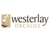 Westerlay Orchids
